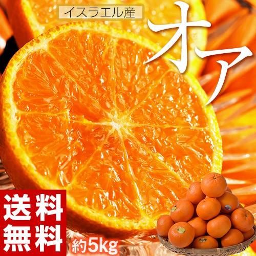 送料無料 おまけつき! 神秘の柑橘 「オア」約5kg 1箱:30〜50玉 みかん オレンジ フルーツ オア君ハンカチプレゼント イスラエル産