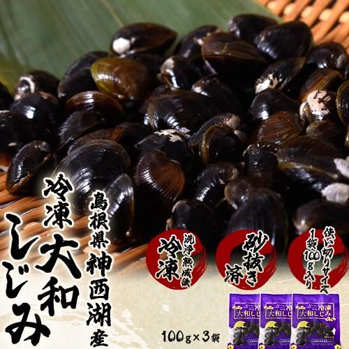 しじみ シジミ 蜆 島根県神西湖産 大和しじみ 大サイズ (M) 100g×3袋