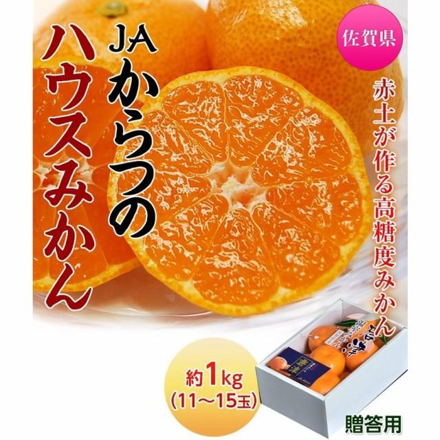 みかん 佐賀県産 JAからつのハウスみかん 約1kg(11〜15玉)化粧箱 送料無料