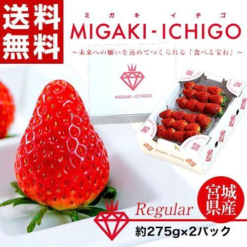 いちご イチゴ 苺 宮城県産 ミガキイチゴ 1箱550g (約275g×2パック) ※冷蔵 送料無料