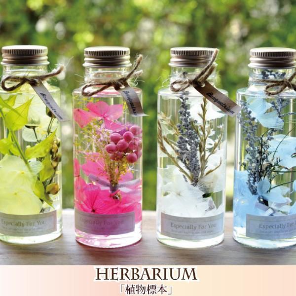 選べるカラー ハーバリウム ボトル ハーバリウム 植物標本  翌日配達 送料無料(一部地域を除く) 枯れない 花 フラワーギフト
