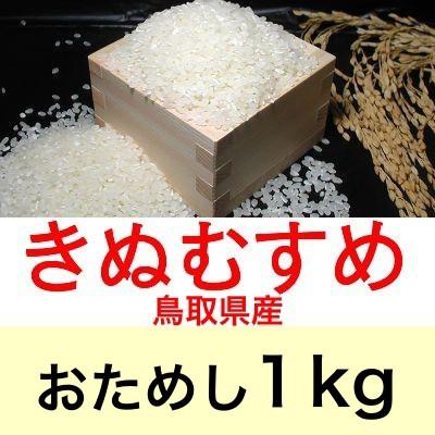 令和2年産 鳥取県産きぬむすめ1kgおためしに最適