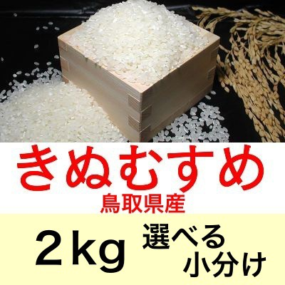 令和2年産 鳥取県産きぬむすめ2kg便利な選べる小分け