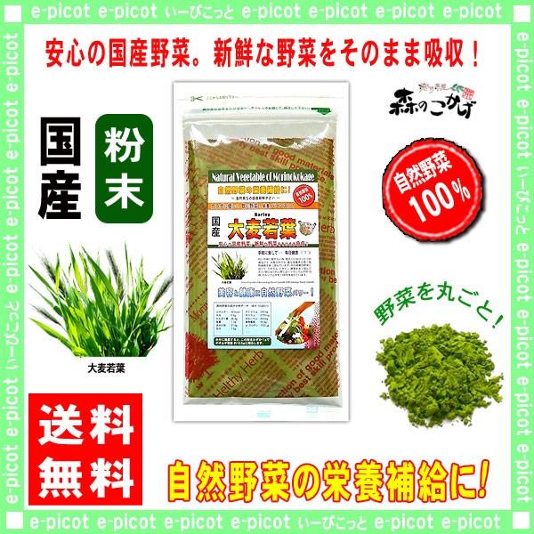 A 国産 大麦若葉 【粉末】 100g やさい パウダー 100% 送料無料 森のこかげ 健やかハウス 野菜粉末 オオムギ若葉