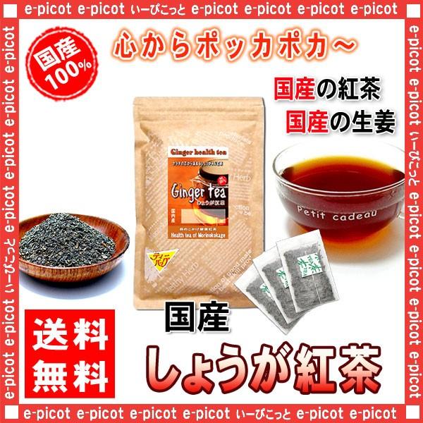 J 国産 しょうが紅茶 2.5g×30p ティーバッグ 寒がりの方に 生姜ショウガ 送料無料 森のこかげ 健やかハウス