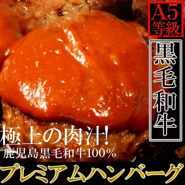 A5ランク 鹿児島黒牛100% プレミアムハンバーグ 130g×5個 冷凍