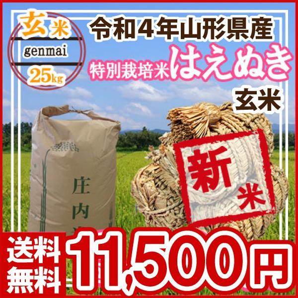 令和元年 山形県産 特別栽培米 はえぬき 玄米 25kg(5kg×5)(送料無料)