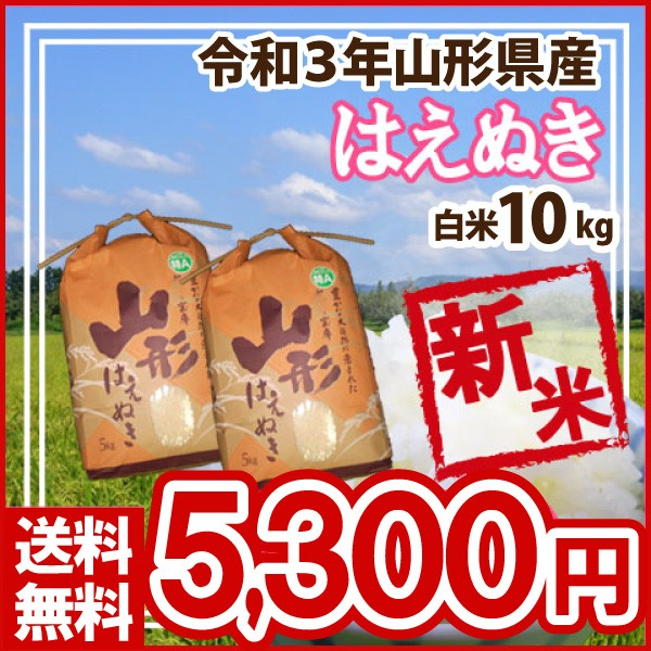 令和元年 山形県産 はえぬき 白米 精米済 10kg(5kg×2)(送料無料)