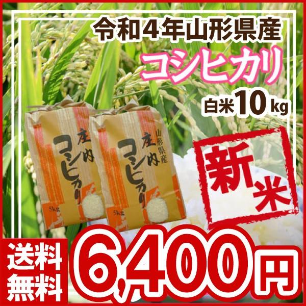 令和元年 山形県産 コシヒカリ 白米 精米済 10kg(5kg×2)(送料無料)