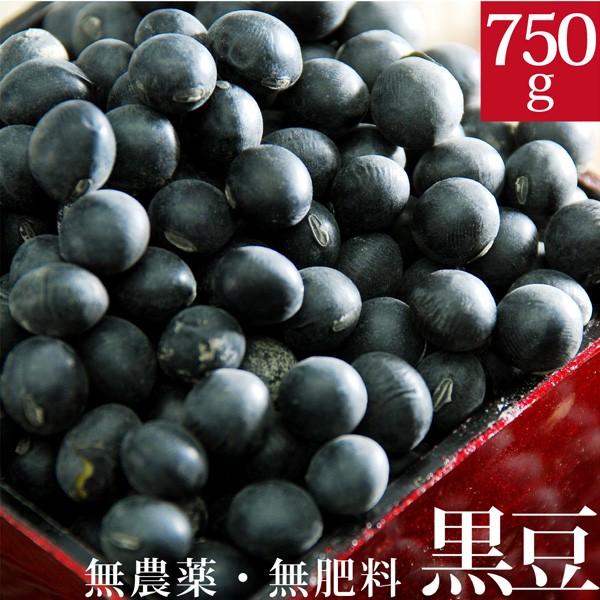 伊藤秀幸さんの黒豆 750g 自然栽培(無農薬・無肥料) 北海道産