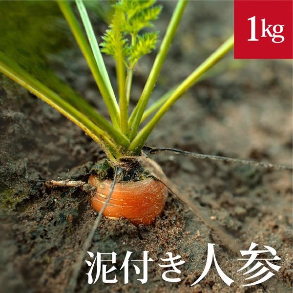 泥付き人参1kg 国産 無農薬【ゲルソン療法】にんじん ニンジン