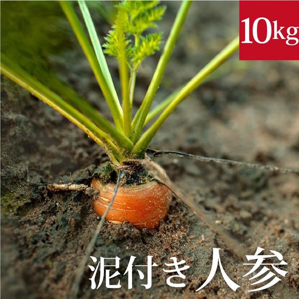 泥付き人参10kg 国産 無農薬【ゲルソン療法】にんじん ニンジン