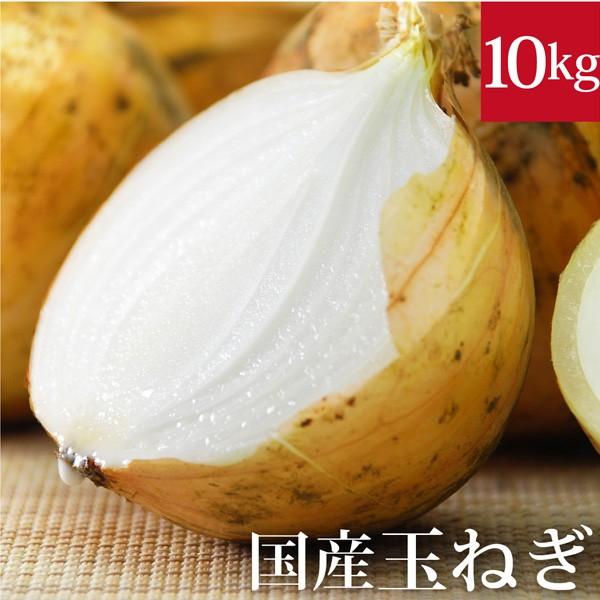 玉ねぎ10kg 国産 無農薬