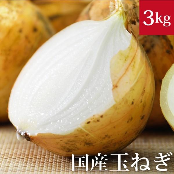 玉ねぎ3kg 国産 無農薬