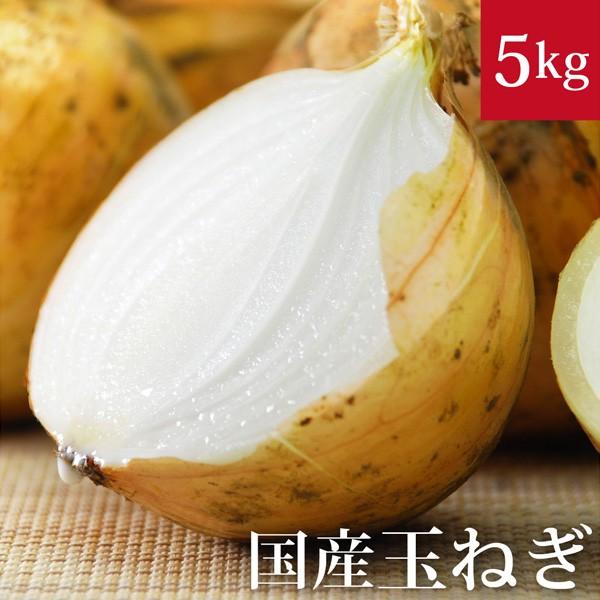 玉ねぎ5kg 国産 無農薬