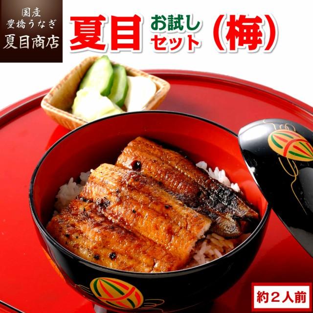 豊橋うなぎ お試し夏目セット 蒲焼き(梅) 3種類の蒲焼きが入って約2人前 国産 ウナギ 鰻 送料無料