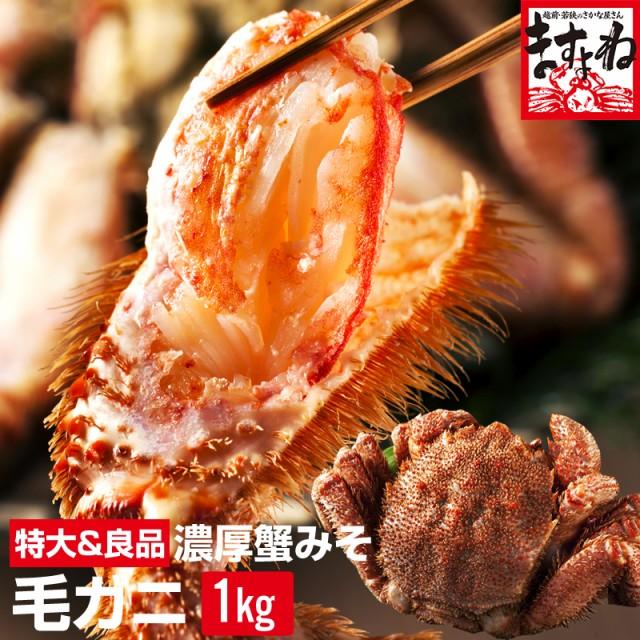 超早割★茹で毛ガニ特大サイズ1kg前後※1尾 送料無料 ボイル・急速冷凍 かに カニ 蟹 毛がに 毛蟹 けがに ケガニ 海産 魚介 海の幸 かに