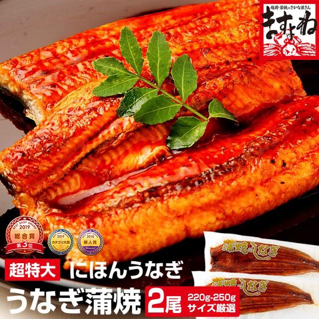 ギフト うなぎ ウナギ 鰻 ニホンウナギ蒲焼(台湾産) 超特大うなぎ薄焼き2尾セット(220g〜250g×2尾) 送料無料 タレ・山椒・化粧箱付き の