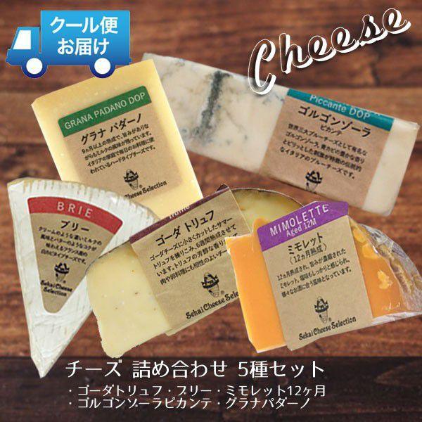 チーズ おつまみ 詰め合わせ セット お得 送料無料 ワインに合う 5種セット ゴルゴンゾーラ ゴーダトリュフ