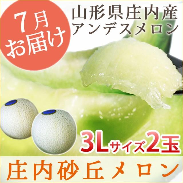 【送料無料】山形県庄内産アンデスメロン 秀3L 2玉(青肉) お中元 ギフト プレゼント