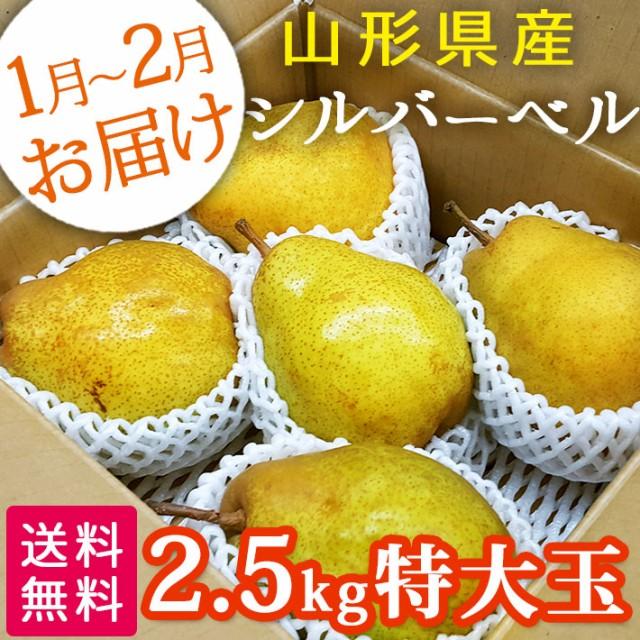 山形県産 洋梨 シルバーベル 特大玉 約2.5kg(約5〜6玉)【送料無料】