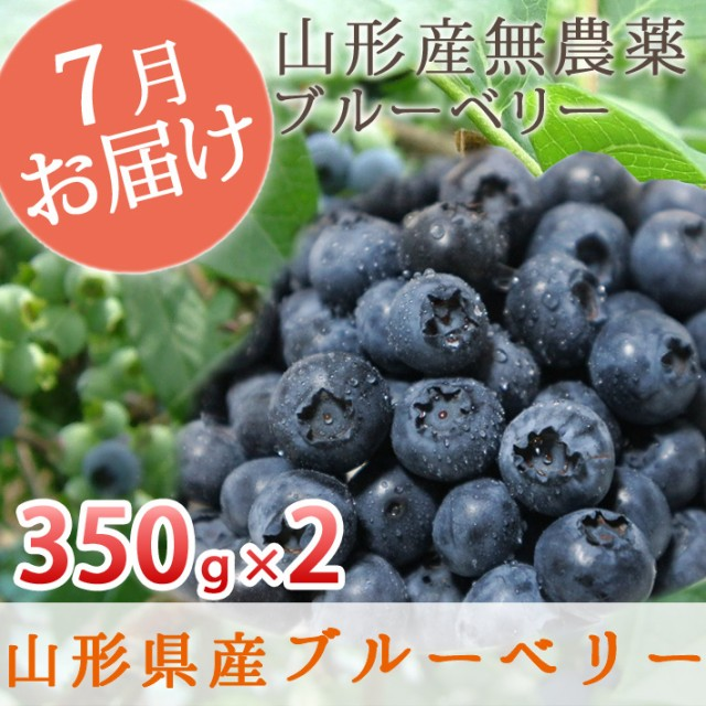 山形県産 無農薬 完熟 大粒 ブルーベリー 生700g(350g×2) お中元 夏 ギフト プレゼント