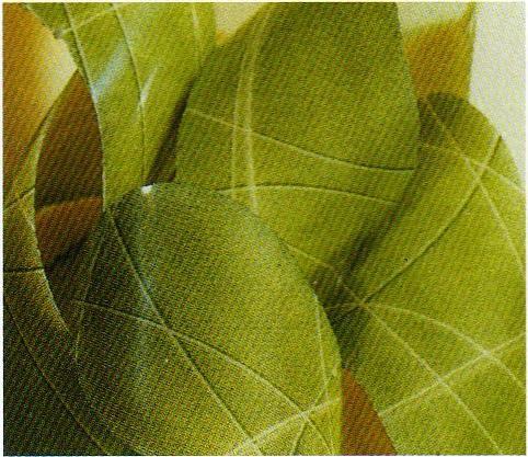 チョコレート用 転写シート(キウイ 緑)25枚 フランス産