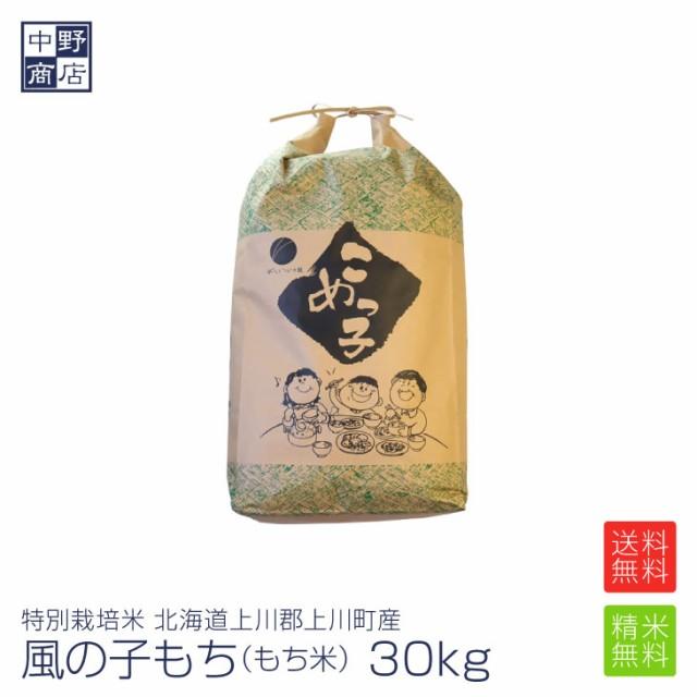 もち米 30kg 特別栽培米/北海道産 風の子もち (節減対象農薬5割減・化学肥料 5割減)もち米 30kgもち米 送料無料