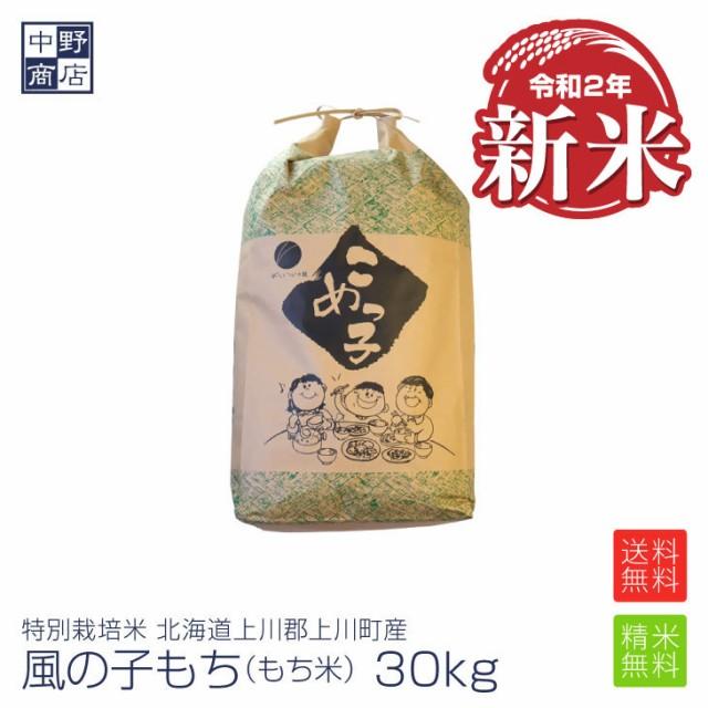 新米 もち米 30kg 特別栽培米/北海道産 風の子もち (節減対象農薬5割減・化学肥料 5割減)もち米 30kgもち米 送料無料