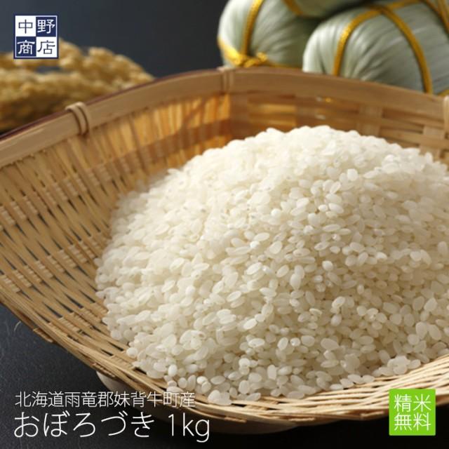 無農薬 米 玄米 北海道産 おぼろづき 1kg 特別栽培米(節減対象農薬 栽培期間中不使用 化学肥料(窒素肥料)栽培期間中不使用)