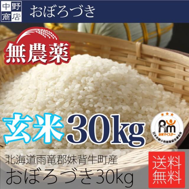 玄米でお届け限定価格! 無農薬 米 玄米 北海道産 おぼろづき 30kg 特別栽培米(節減対象農薬 栽培期間中不使用 化学肥料(窒素肥料)栽