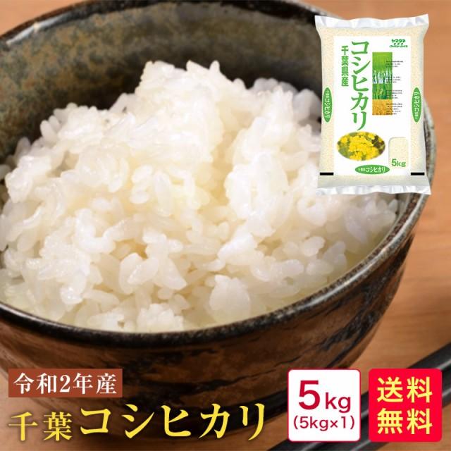 【新米】米 5kg 送料無料 令和2年産 千葉コシヒカリ5kg