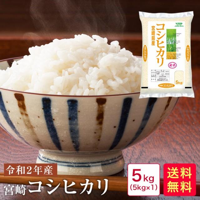 【新米 5kg】令和2年産 宮崎コシヒカリ5kg\大雨にも負けず元気に育った新米をご賞味ください♪/