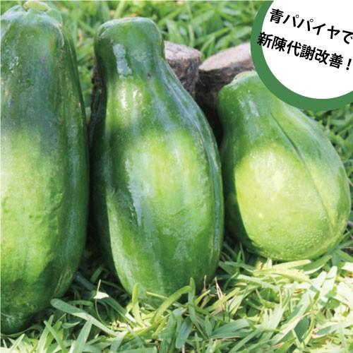 沖縄産青パパイヤ 約10kg