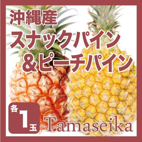 【発送3月下旬〜6月】 【送料無料】【完熟パイン】沖縄産 ピーチパイン&スナックパイン各