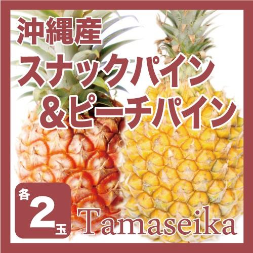 【発送3月下旬〜6月】 【完熟パイン】【送料無料】沖縄の人気パイン2種セット沖縄産 ピー