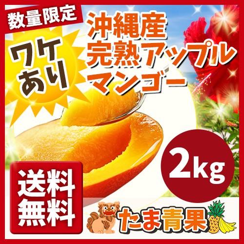 【送料無料】完熟マンゴー わけあり 約2kg ☆送料無料☆ キズ、黒点有り 発送7月上旬〜8月上旬