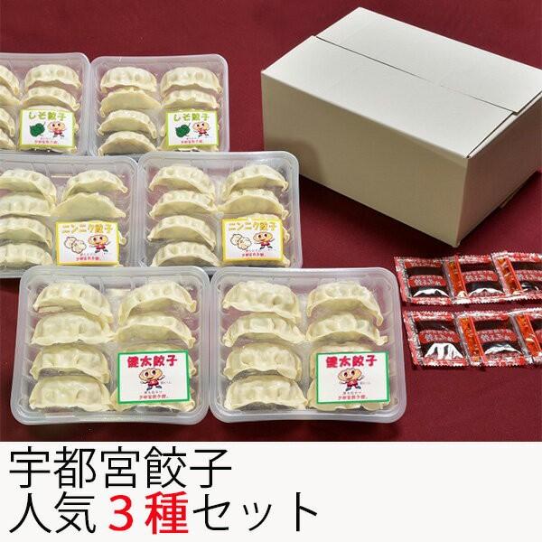 宇都宮餃子館 人気の3種セット(健太餃子・シソ餃子・ニンニク餃子) さくら食品 (お歳暮のし対応可)