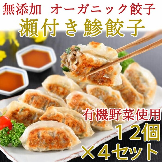無添加 瀬付き鯵餃子 210g(12個)×4セット 天然魚と有機野菜を使用