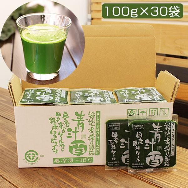 青汁百 100g×30袋セット(冷凍)(国産ケール・完全無添加100%ジュース)(栽培期間農薬不使用)(ベルファーム)