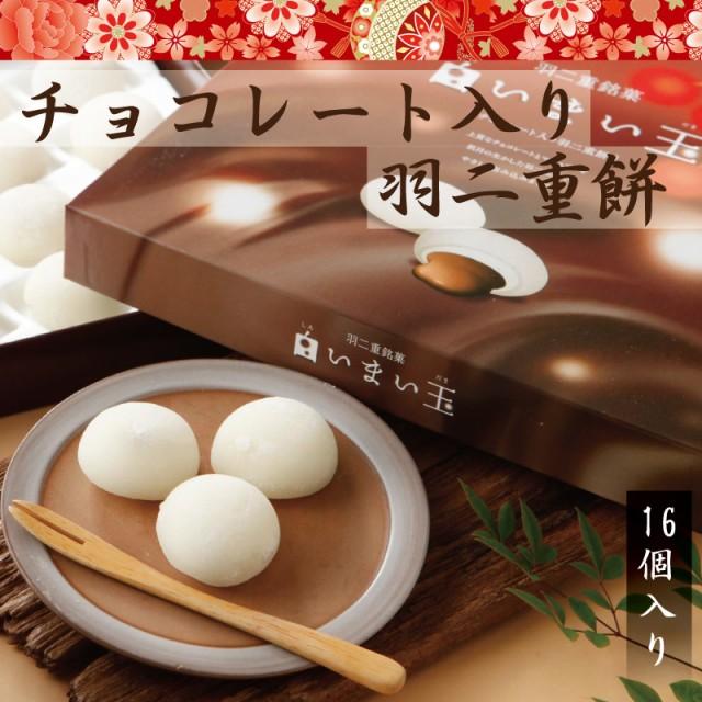 チョコレート入り羽二重餅 16個入 和菓子 福井 銘菓 お土産 スイーツ ギフト 送料無料