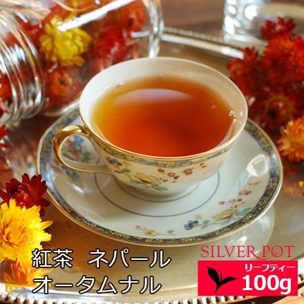 紅茶 お徳用パック ネパール オータムナル 2019年 ジュンチヤバリ茶園 HRHT Autumn Supreme 100g / 送料無料