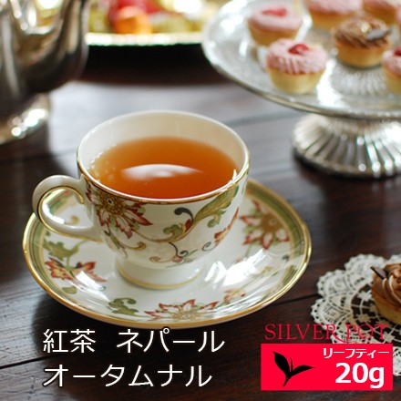 紅茶 ネパール オータムナル 2020年 ジュンチヤバリ茶園 HRHT Autumn Supreme 20g / 1配送1690円以上のお買い上げで送料無料