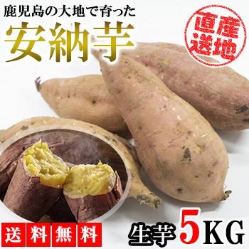 安納芋 5kg 送料無料 産地直送 産直 土付き さつまいも さつま芋 薩摩芋 焼きいも 焼き芋 石焼き芋 芋 いも イモ 鹿児島県産