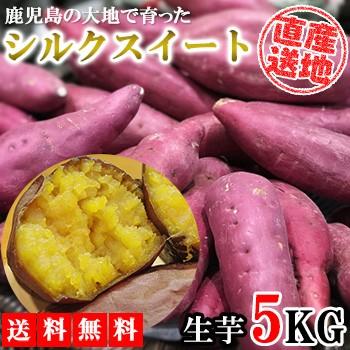 シルクスイート さつまいも 5kg 送料無料 産地直送 産直 土付き さつま芋 薩摩芋 焼きいも 焼き芋 石焼き芋 芋 いも イモ 鹿児島県産
