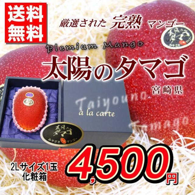 送料無料 太陽のタマゴ 宮崎県産 特撰 マンゴー 完熟 2Lサイズ 1玉化粧箱 母の日ギフト 贈答用 家庭用 おためし