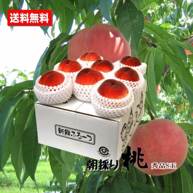 送料無料 完熟桃 和歌山県産 秀品 8玉 もも 高糖度 朝採り お中元ギフト 贈答用 家庭用 おためし