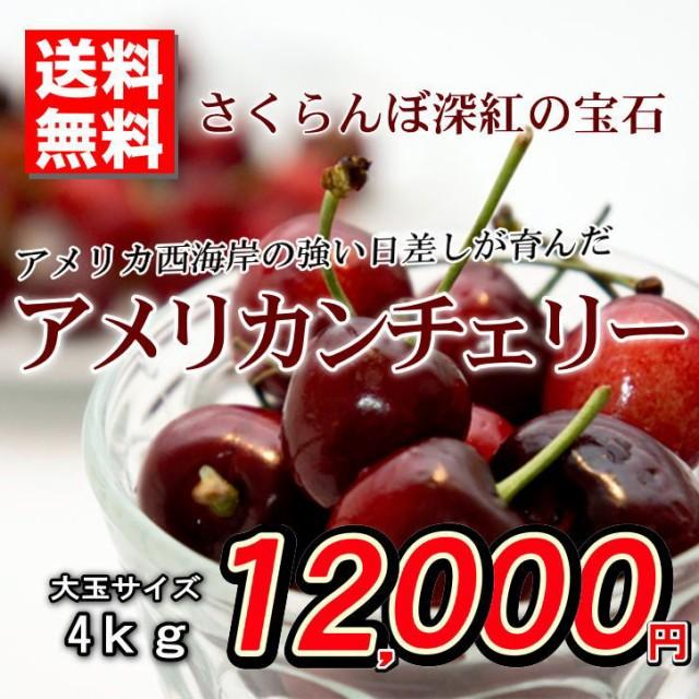 送料無料 アメリカンチェリー アメリカ産 さくらんぼ 秀品 大玉 約4kg バラ詰め 贈答用 ご家庭用 おためし