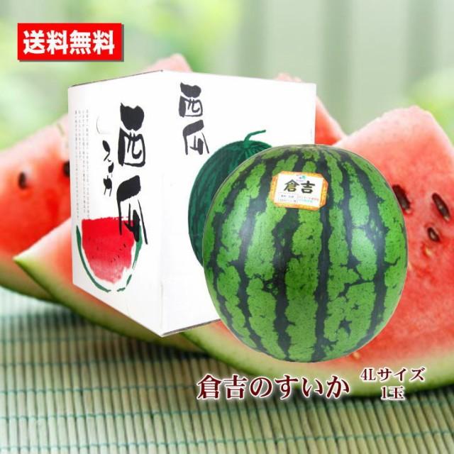 送料無料 倉吉のすいか 鳥取県産 4L 特大 1玉 すいか あまい 糖度センサー お中元ギフト 贈答用 家庭用 おためし