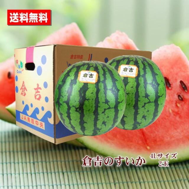 送料無料 倉吉のすいか 鳥取県産 4L 特大 2玉 すいか あまい 糖度センサー お中元ギフト 贈答用 家庭用 おためし